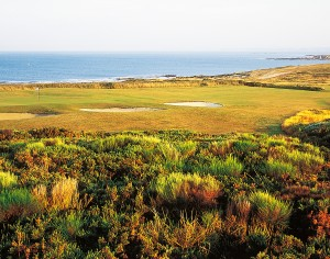 ploemeurOcean golf